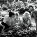 Коммунизм коллективизм и огородничество в школах