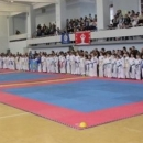 Чемпионат области по  тхэквондо в Пскове