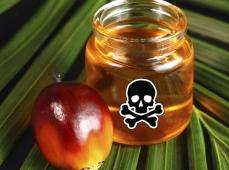 Пальмовое масло атакует